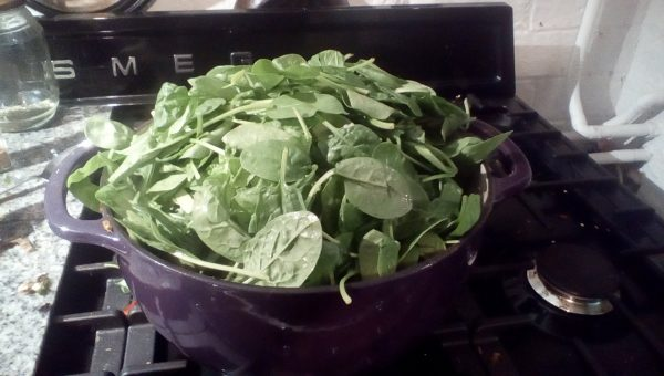Now add the spinach. Yes it will all fit! Add in two lots if you have to. Put the lid on and steam until wilted. This will take about five minutes.