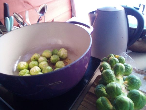 Put the oil and spice seeds into a big pot, I find enameled cast iron cooks the veg beautifully. Peel the sprouts and begin by frying them with the spices.